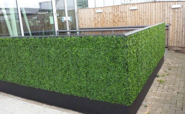 Bespoke Artificial Boxwood Hedge