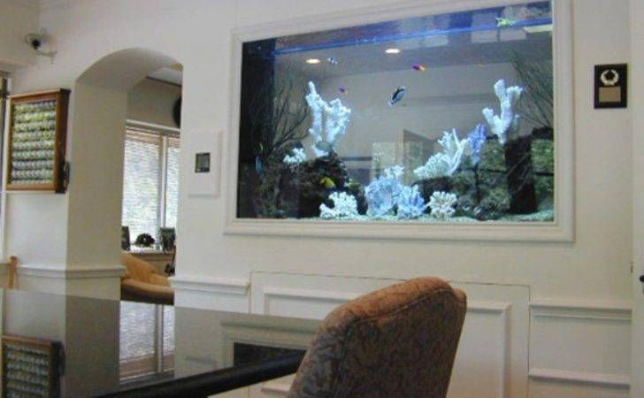 Best Aquarium Design Home Interior Project