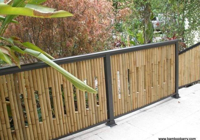 Best Bamboo Fencing Ideas Pinterest