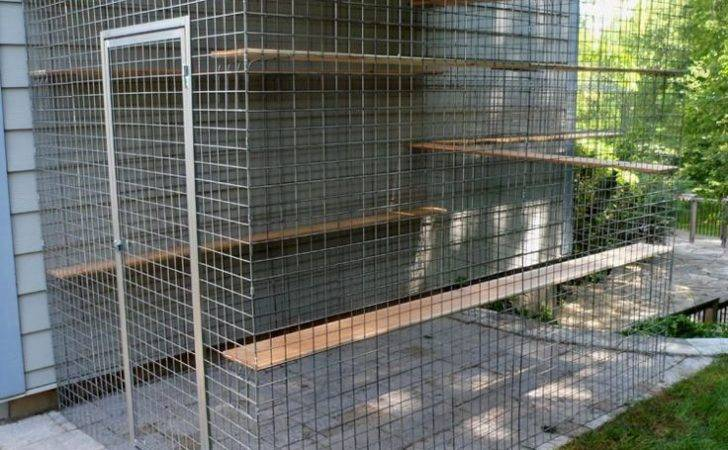 Best Catio Kits Pinterest Cat Stuff