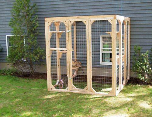 Best Catios Cat Enclosures Pinterest Cute