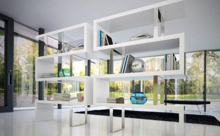 Best Fresh Modern Library Ladder Ideas