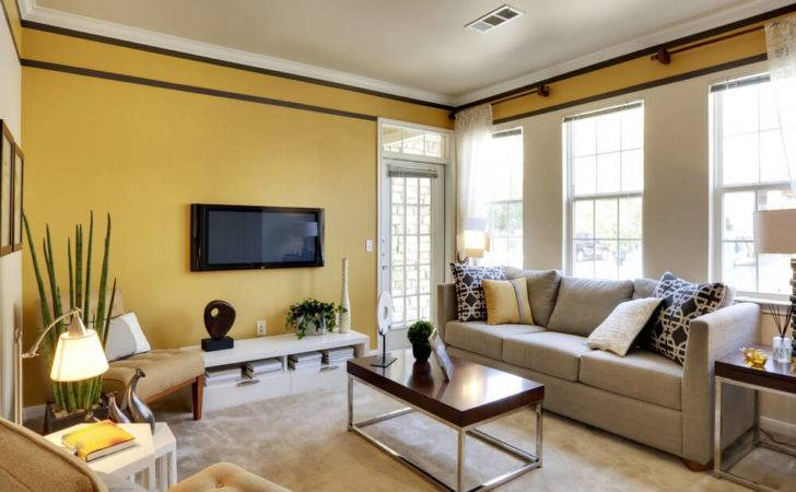 Best Living Room Colors Love Home Designs