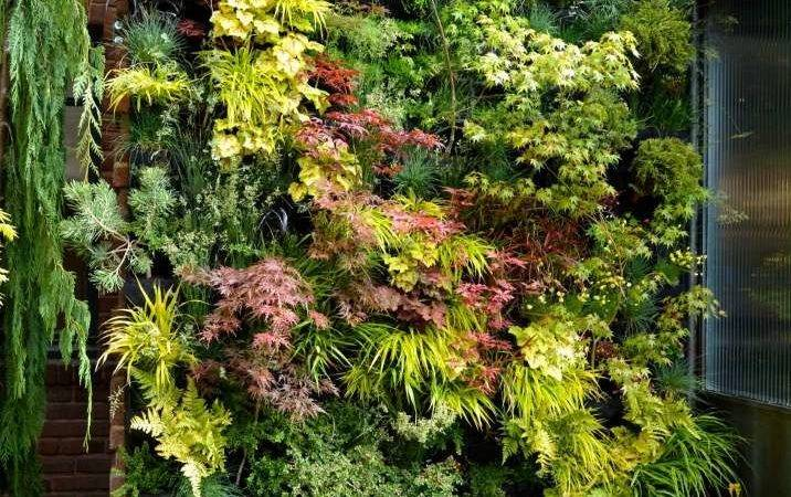 Best Vertical Garden Ideas Designs