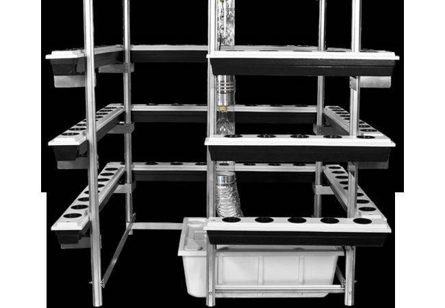 Big Buddha Box Vertical Hydroponics Its Finest System