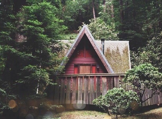 Big Sur Cabin Woods Pinterest