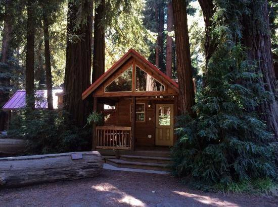 Big Sur Campground Cabins Reviews Tripadvisor
