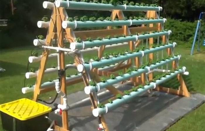 Blog Gardening Hydroponic Urban Farming Frame Vertical