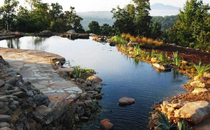 Blog Natural Swimming Pools Ponds Design Construction
