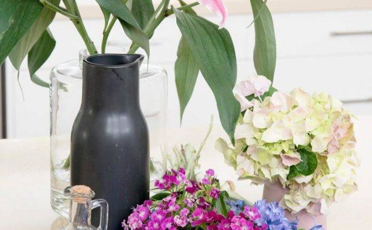 Blooms Rooms Pet Safe Plants Flowers