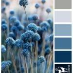 Blue Pompom Grey Steel Designcat Colour Inspiration Pallet
