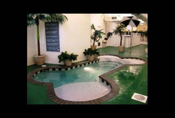 Bone Shaped Dog Pool Indoor Park Your Can Run Play