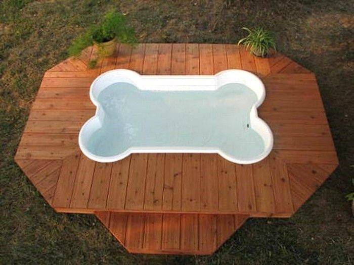 Bone Shaped Doggie Pool Deck Pools Pinterest
