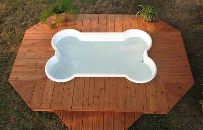 Bone Shaped Doggie Pool Deckswimming Pools Dogs House