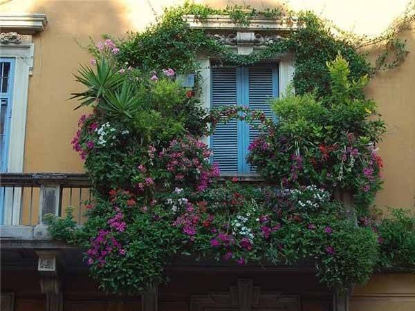 Bright Balcony Decorating Flowers Blooming Designs
