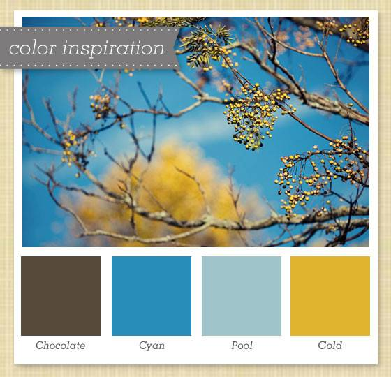 Brown Blue Gold Color Palette Sarah Hearts