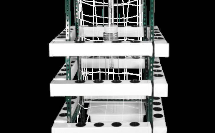 Buddha Box Vertical Hydroponic Grow System Plant