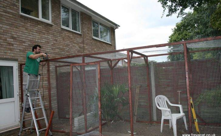 Build Catio Part Cat Called Freya Teego Too