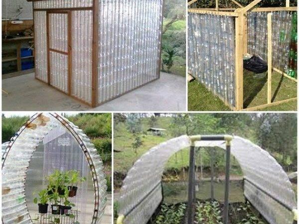 Build Plastic Bottle Greenhouse Home Design Garden