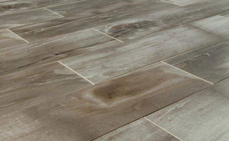Builddirect Kaska Italian Porcelain Tile Petrified Wood Series