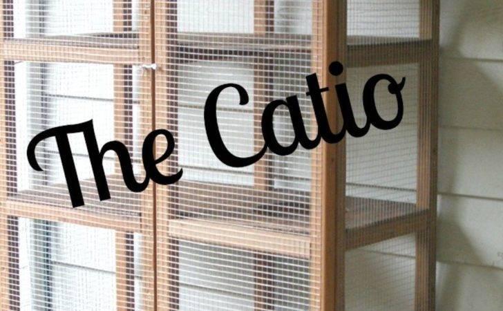 Building Backyard Catio Hometalk
