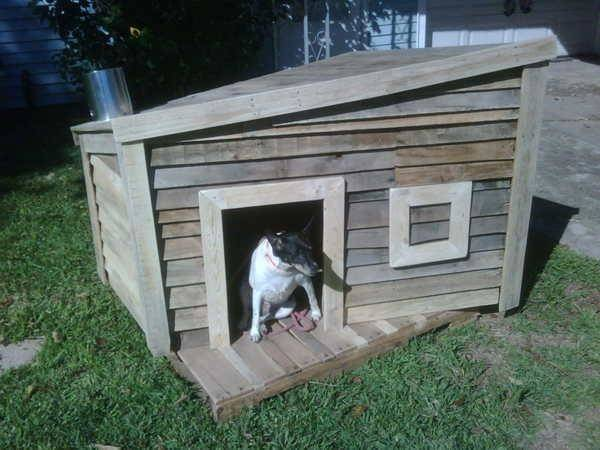 Building Doghouse Out Pallets Ideas