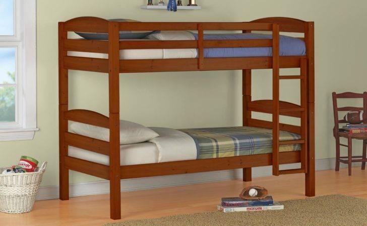 Built Bunk Beds Ideas Plants Kids Bedroom Alocazia Awesome