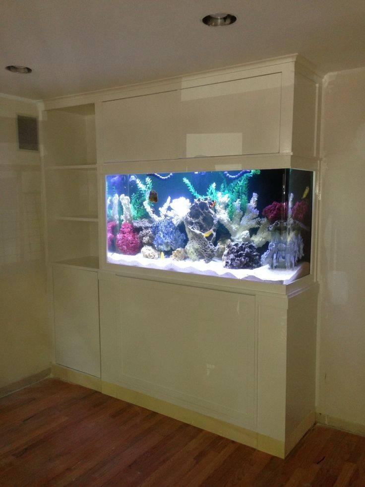 Built Fish Tank