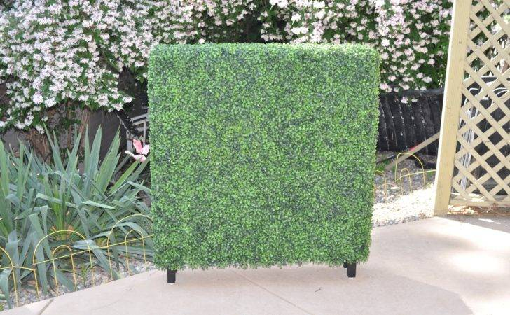 Buy Boxwood Hedge Panel Legs Artificial Outdoor