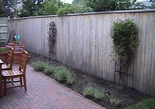 Buy House Redue Landscape Brett Garden Design