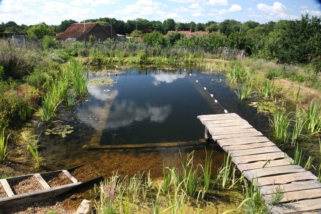 Byzantineflowers Organic Natural Swimming Pools
