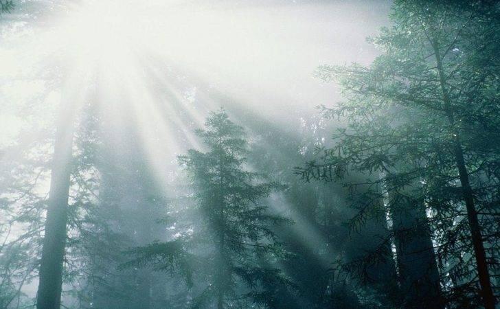 Calming Serene