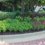 Can Miss Commercial Landscaping Ideas Business