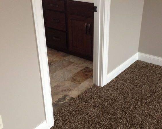 Carpet Colors Dark Brown Paint Living Room