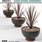 Case Study Planters Archives Modernica Blog
