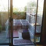 Cat Catz Dogz Fenced Yard Enclosures Outdoor Cats Ideas