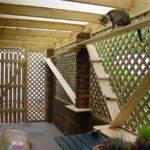 Cat Enclosure Outdoor Cats