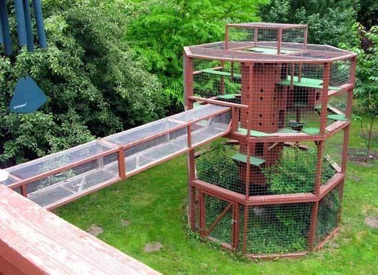 Cat House Plans Diy English Cottage Playhouse Wonderful Qaf