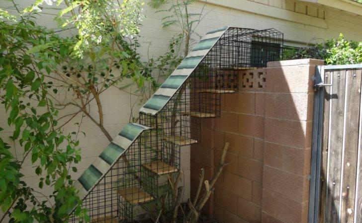 Catbitats Catios Outdoor Enclosures