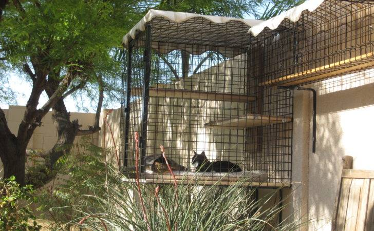 Catbitats Catios Outdoor Enclosures