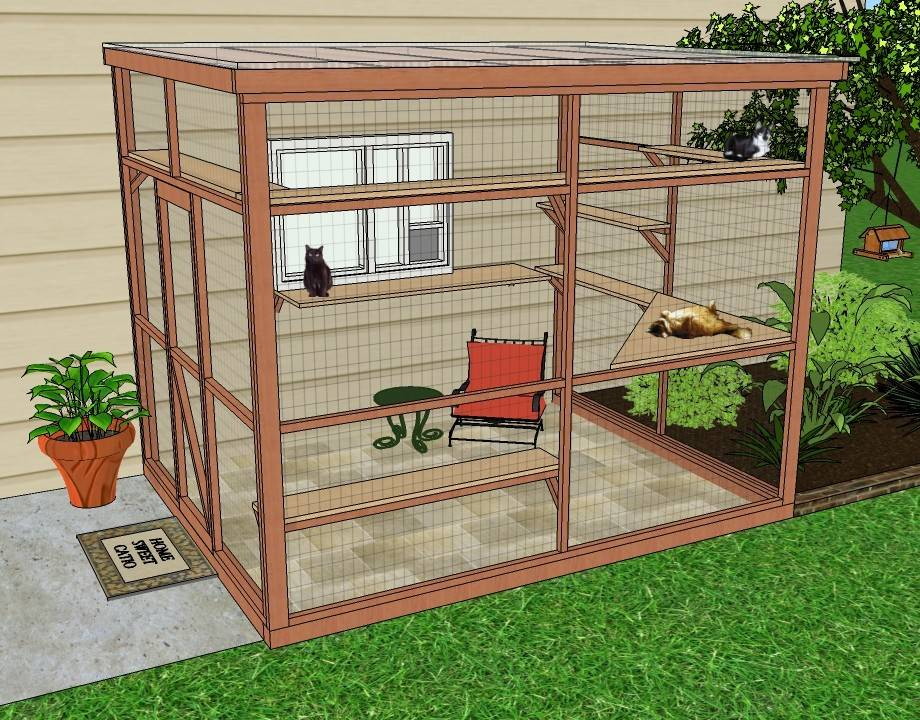 Catio Diy Plan Sanctuary Catiospaces