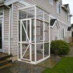 Catio Great Way Ensure Health Happiness Your Cat