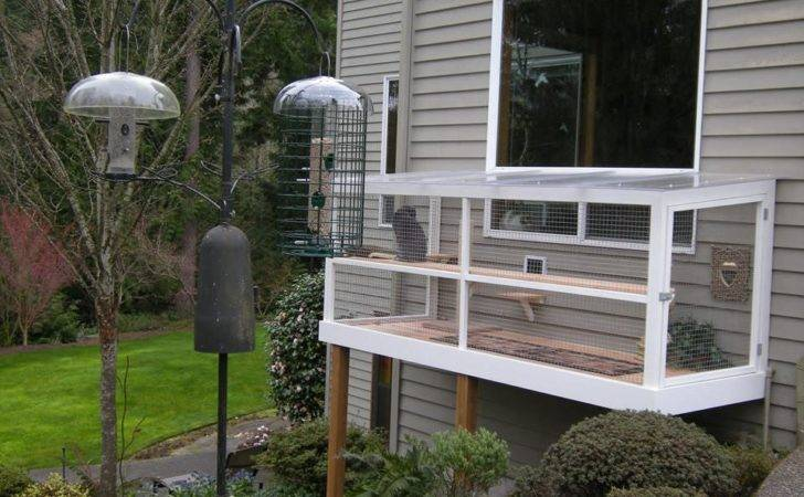 Catio Spaces Helps Cat Owners Build Safe Outdoor Havens Their