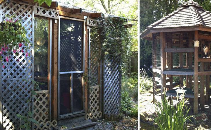 Catio Tour September Showcases Catios Frugal Fabulous