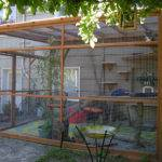 Catios New Trend Backyard Spaces Cat Meow