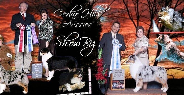 Cedar Hill Website