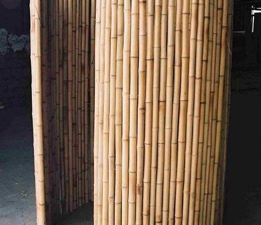 China Bamboo Fence