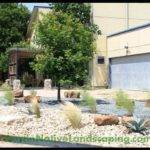 Close Xeriscaping Pinterest