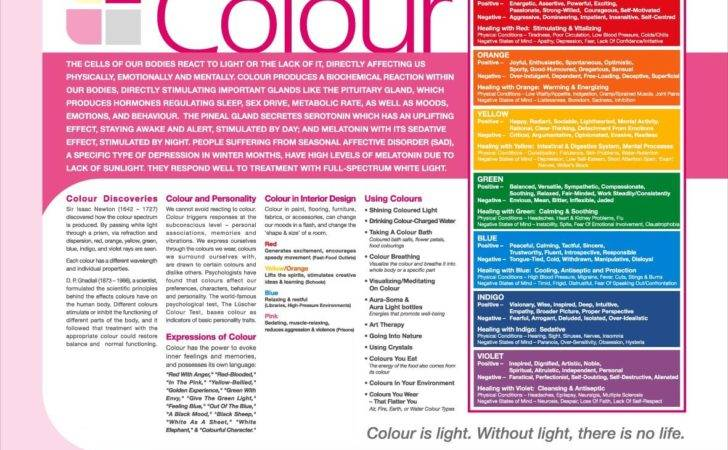 Color Ingredients Theory Therapy