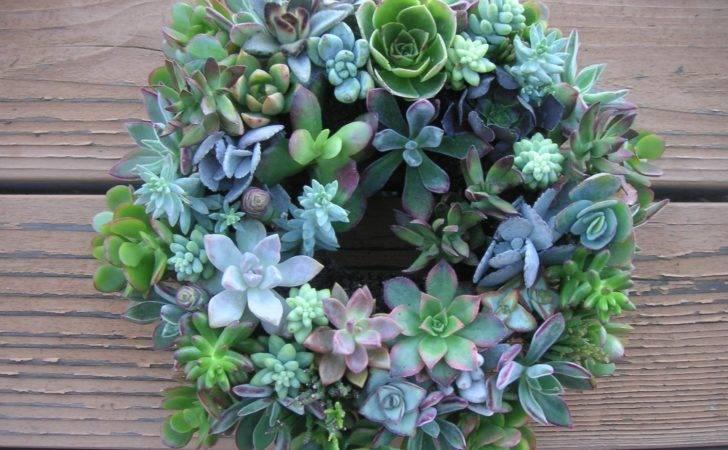 Colorful Living Succulent Centerpiece Wreaths Wedding
